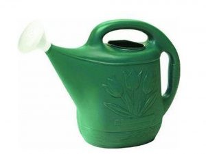 Novelty Watering Can, 2-Gallon
