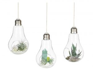 Light Bulb Terrariums with Strings Hanging Glass Vase
