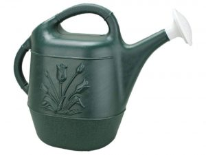 Union Watering Can with Tulip Design