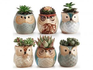 Owl Pot Ceramic Flowing Glaze Base Serial Set Succulent Plant Pot Cactus Plant Pot