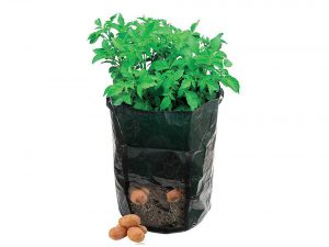 Amgate Garden Potato Grow Bag Vegetables Planter with Access Flap for Harvesting