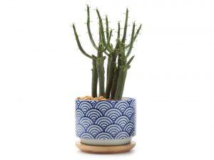 T4U 3 Inch Ceramic japanese Style Serial No.3 succulent Plant Pot/Cactus Plant Pot Flower Pot/Container/Planter