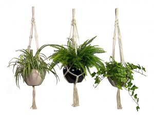 Macrame Plant Hanging Planter 3 Pack Set