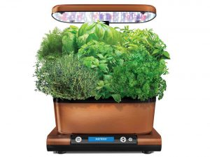 AeroGarden Harvest Elite Hydroponic Garden with Gourmet Herb Seed Kit, Copper Stainless