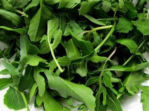 Arugula Seeds - ORGANIC NON-GMO Heirloom Arugula