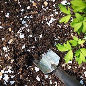 Garden Soils, Fertilizers & Mulches