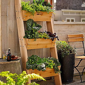 Vertical & Wall Planters