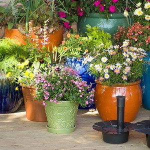 Planters, Pots & Container Accessories
